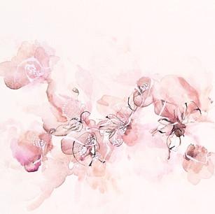 Fleur de coton 2020, 10x14po, disponible