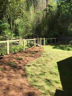 Hogwire Fence & Landscape
