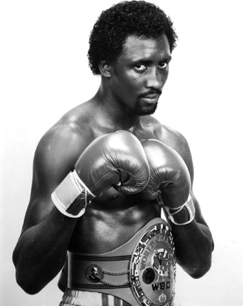 Tommy The Hitman Hearns - Other Boxing Idol