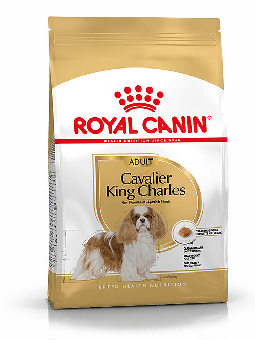 BREED CAVALIER KING CHARLES
