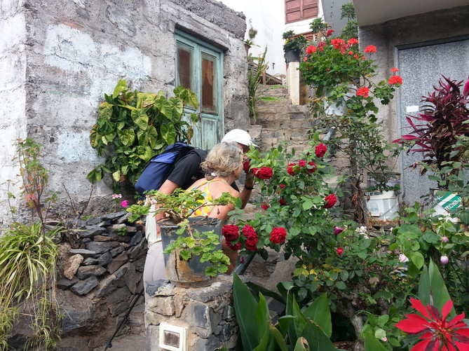 smelling_the_roses.jpg