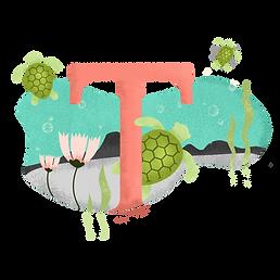 T para tortuga