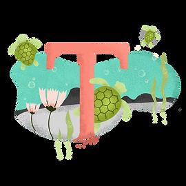 T para tartaruga