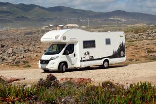 A nossa nova The Jolly Van: Frankie