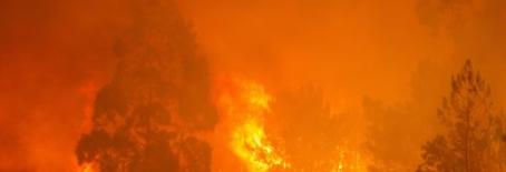 Guia de apoio emocional em situações de Catástrofe