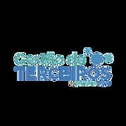 _Gestão de Terceiros - logo vsite (1) (2