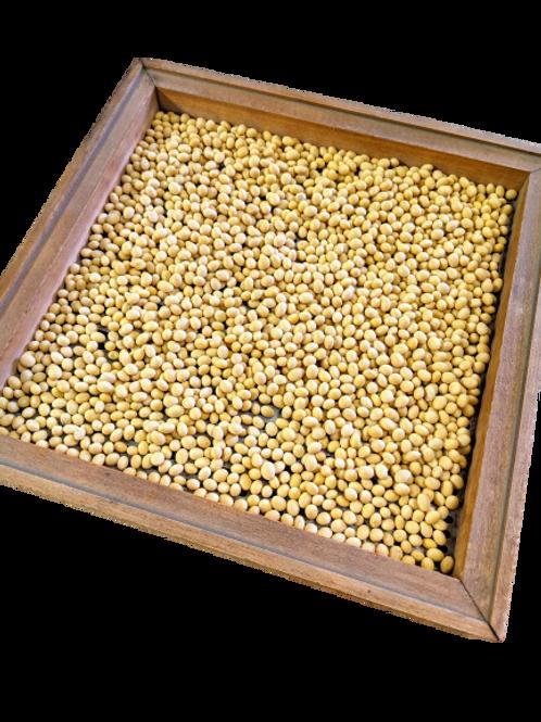 Non-GMO Soybean 2,000 lbs
