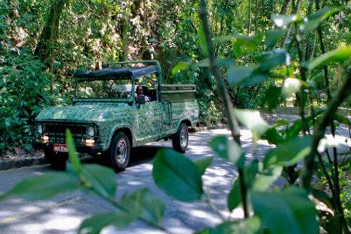 Visita a Floresta da Tijuca em jeeps antigos (Crianças de 03 a 10 anos)