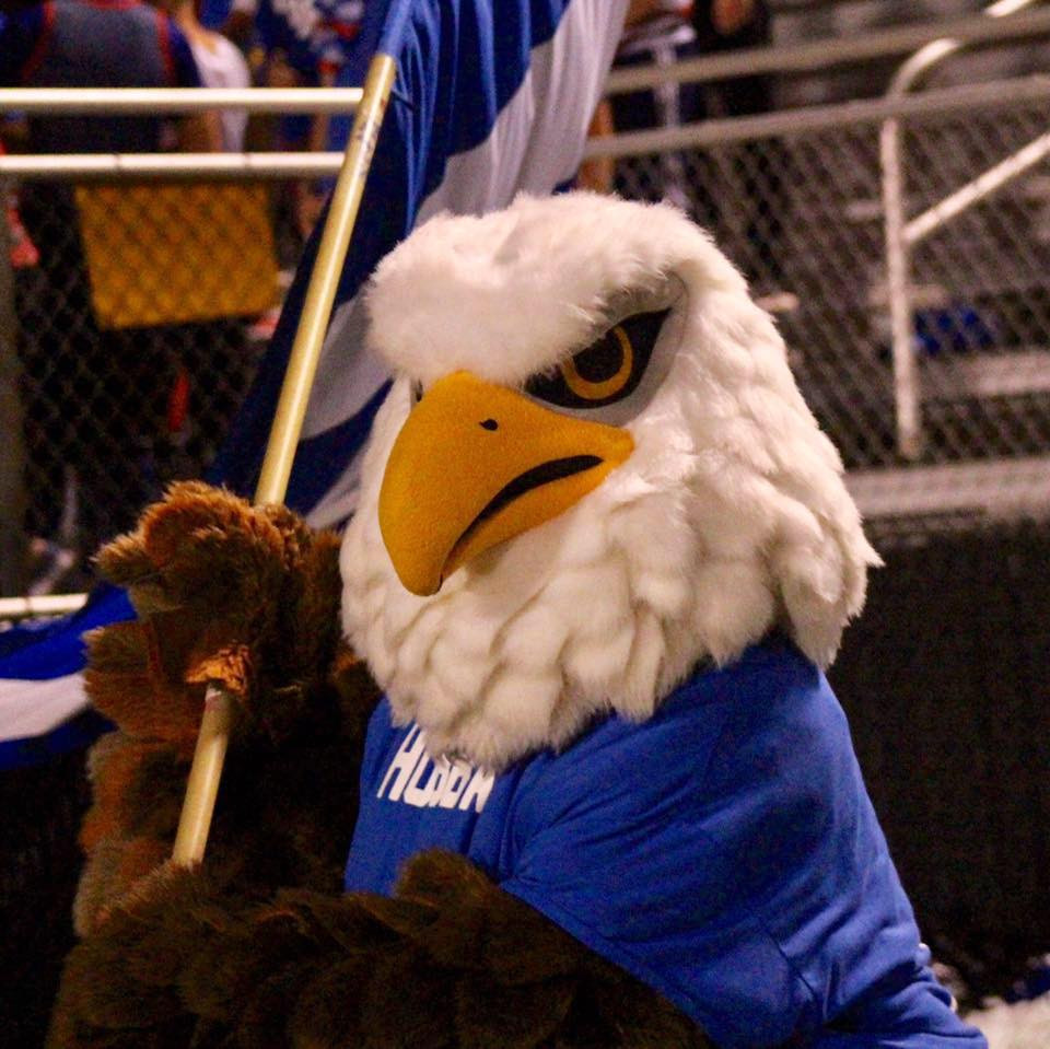 Hubbard Eagle mascot holding the Hubbard Eagle flag at a football game.