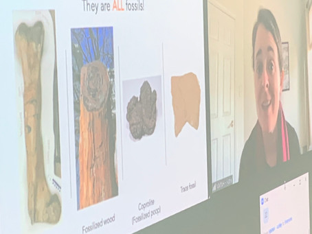 Mrs. Frank's students study fossils, virtually visit Natural History Museum