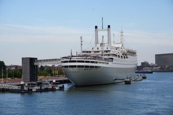 Our SS Rotterdam Experience