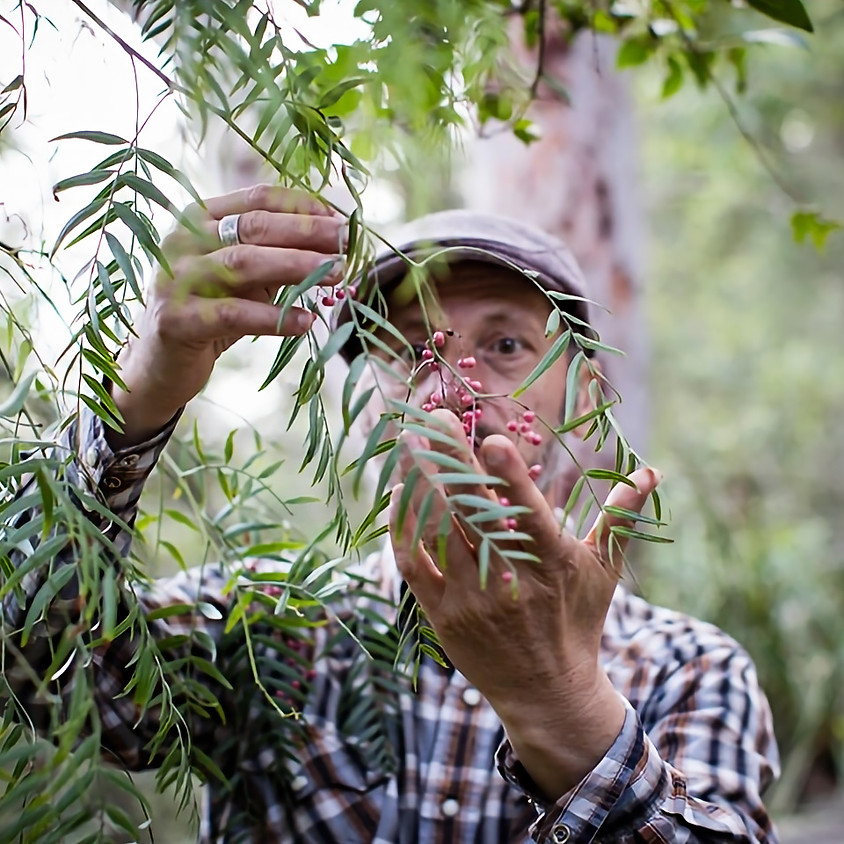 How To: Wild Food Foraging Workshop