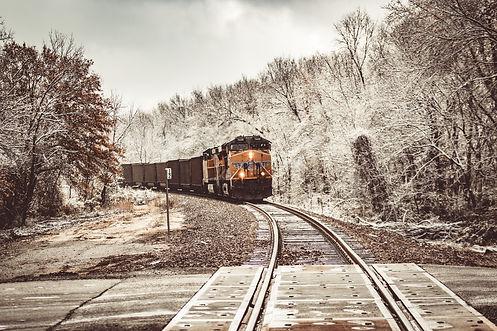 Hawk - Horses - Snow (75 of 75).jpg