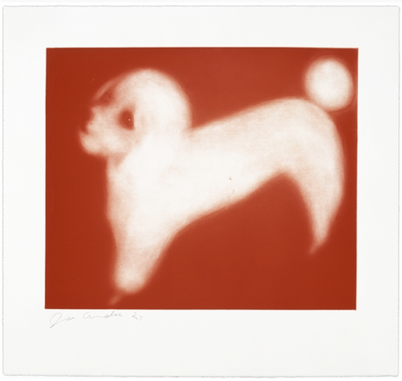 French Poodle (Red)