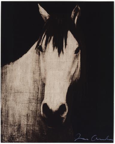 Four Horses 4