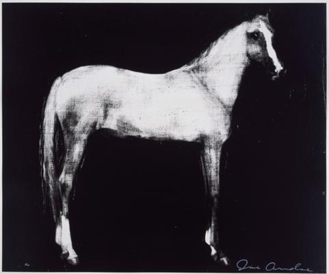 Horse X 12 (Black)