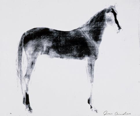 Horse X 12 (White Reversal)