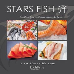 starsfish-Recovered.jpg