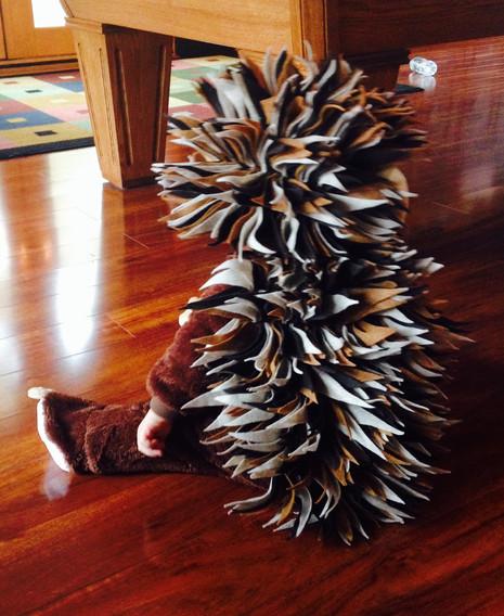 Handmade Hedgehog Costume