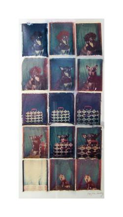 La perruque, la valise magique 2004