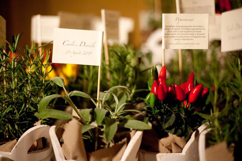 bomboniere con piante aromatiche