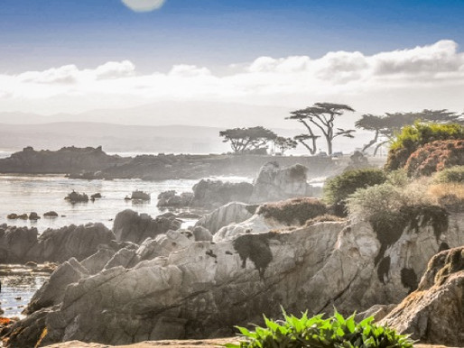 Five Things to do on The Monterey Peninsula (for Non-Golfers)
