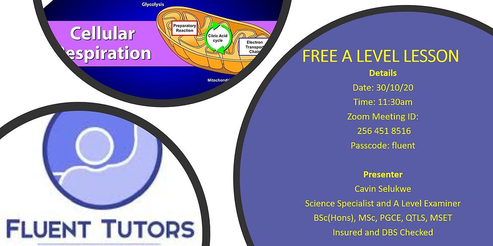 Free A level Respiration  Lesson (AQA, EDEXCEL, OCR, WJEC)