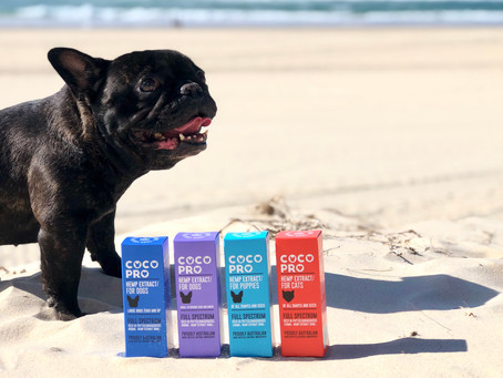 Coco Pro: Best Pet Extract of 2020
