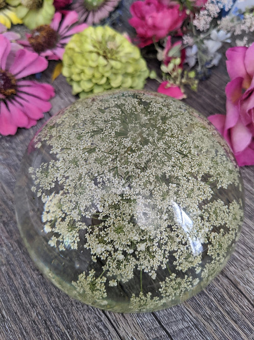 Queen Anne's Lace Dome Resin Art