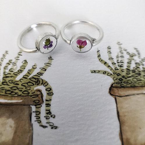 Tiny Pressed Alyssum Blossom Ring