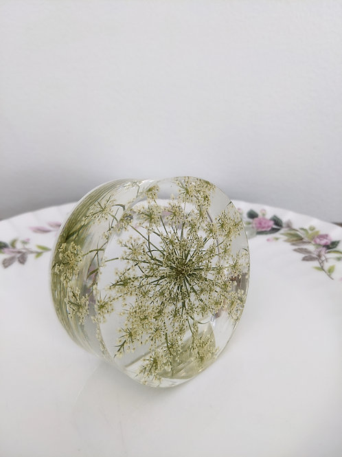 Queen Anne's Lace Self-standing Botanical Resin Art