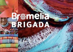 RTEmagicC_bromeliabrigada.jpg.jpg