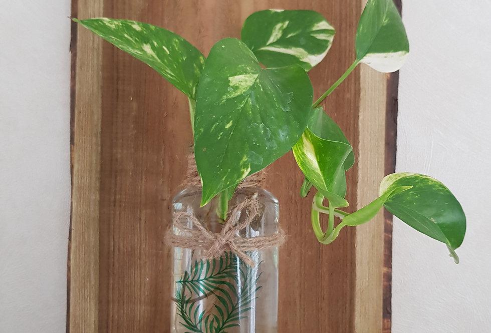 Houten wanddecoratie met glazen vaas