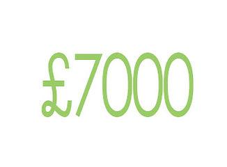 icon £investment amount.jpg