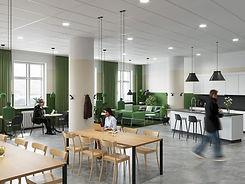 supplier ecophon acoustic ceilings.jpg