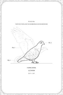 sketch cards-06.jpg