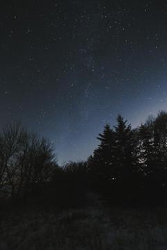 winternight-2.jpg