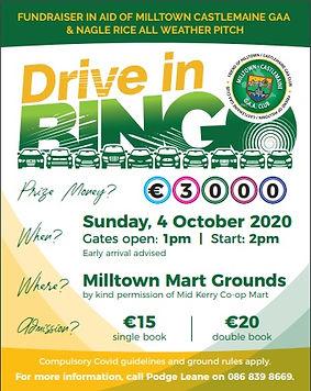 Drive in Bingo.jpg