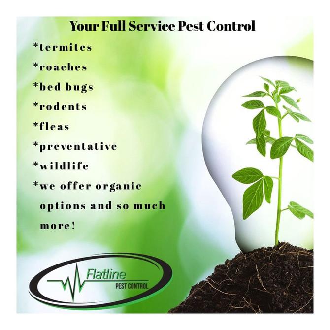 Full Service Pest Control