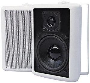 P1 T10 White (Pair)