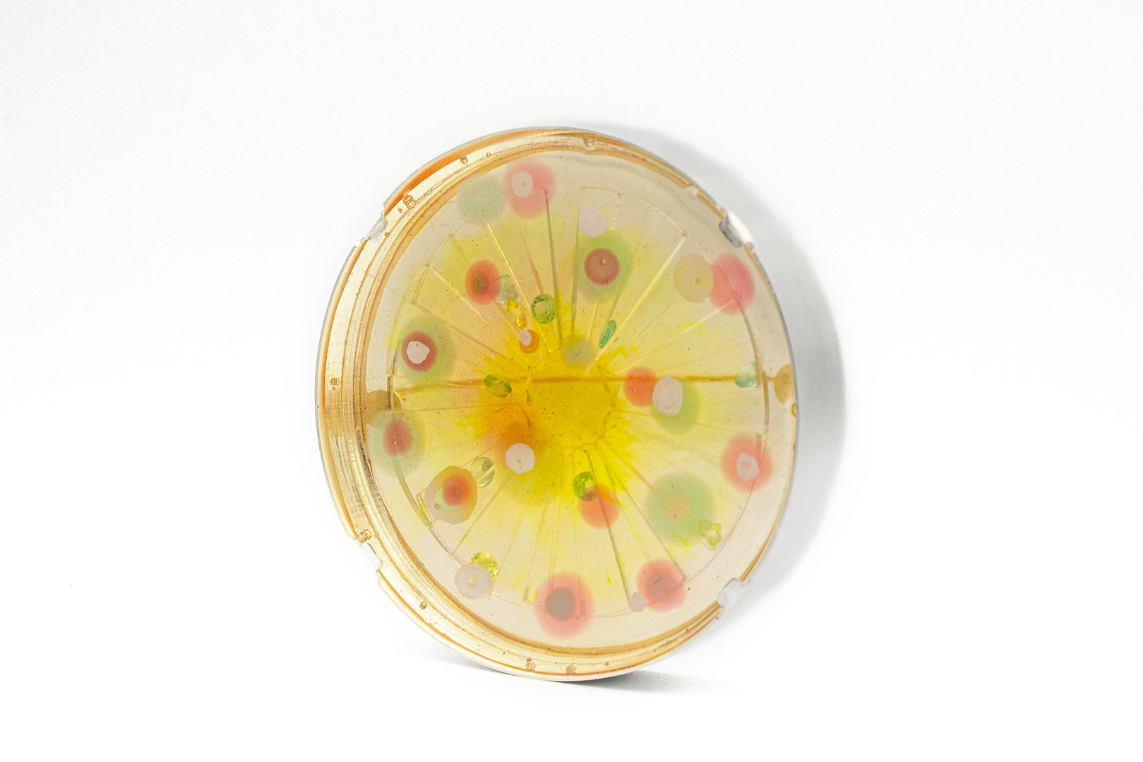 Vibrant Lemon Brooch | 2020