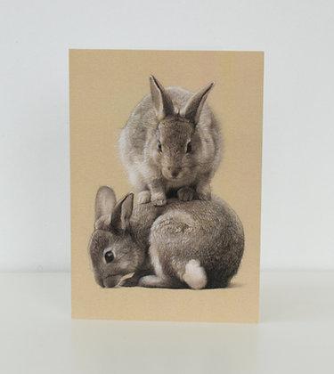 'Bunny Mountain' Greeting Card