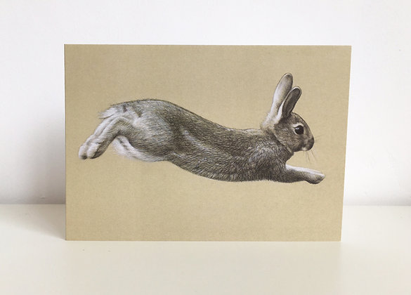 'Run Rabbit' Greeting Card
