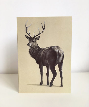 'Red Stag' Greeting Card