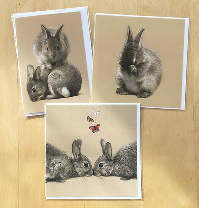 Pack of 3 Mixed Bunny Cards