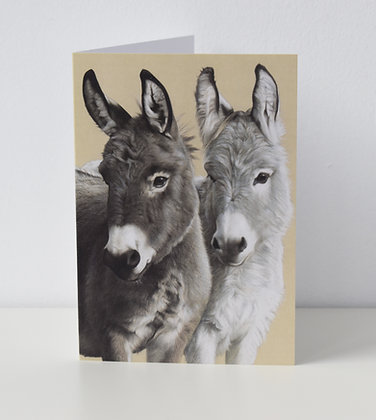 'Donkeys' Greeting Card