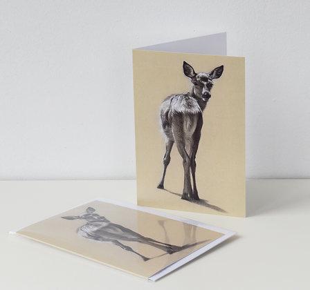 'Little Deer' Greeting Card
