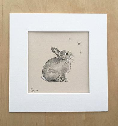 Star Bunny 2