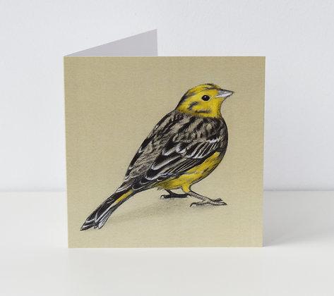 'Yellowhammer' Greeting Card