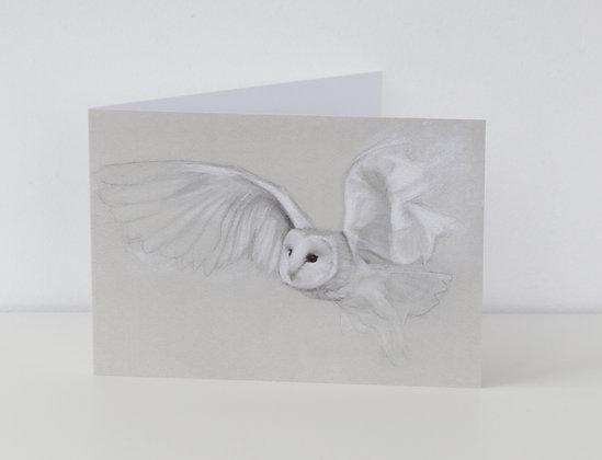 'Flutter' (Barn Owl) Greeting Card